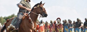 cavalier gaulois spectacle equestre